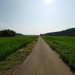 ひかり園4