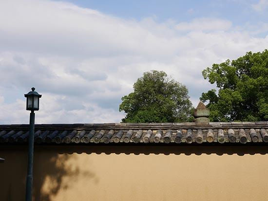 大徳寺27