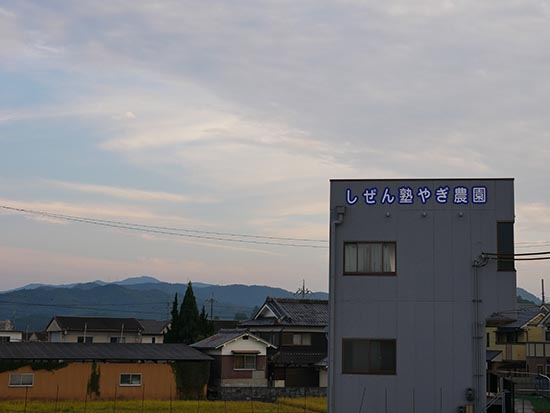 やぎ農園33