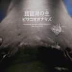 琵琶湖博物館43