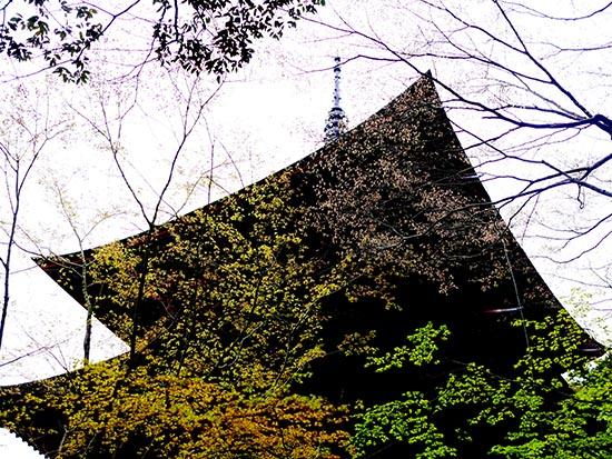 西明寺11