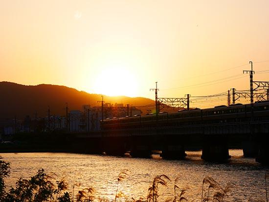 瀬田川2017050702