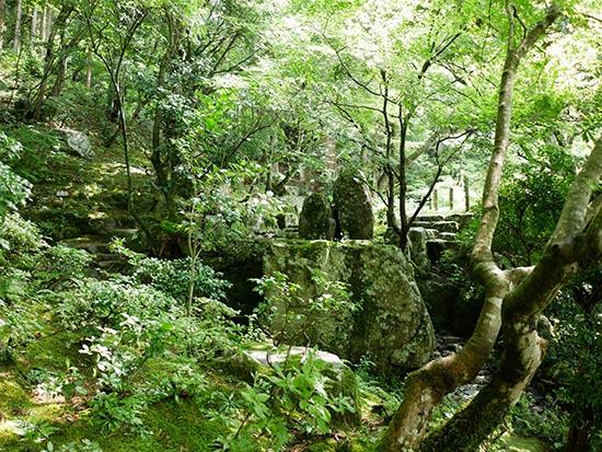 百済寺16